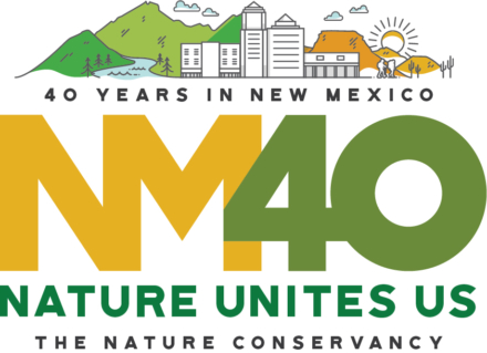 New Mexico 40th Anniversary Logo